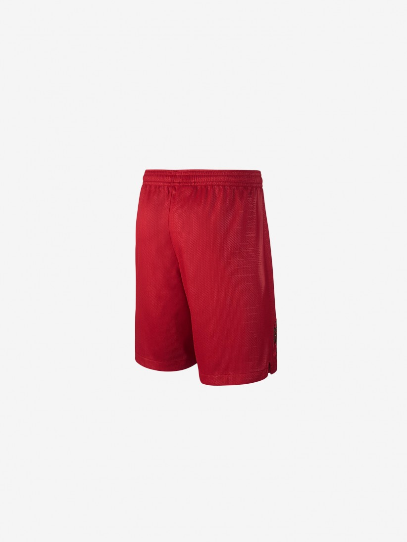 Nike Portugal Vapor 2018 Shorts
