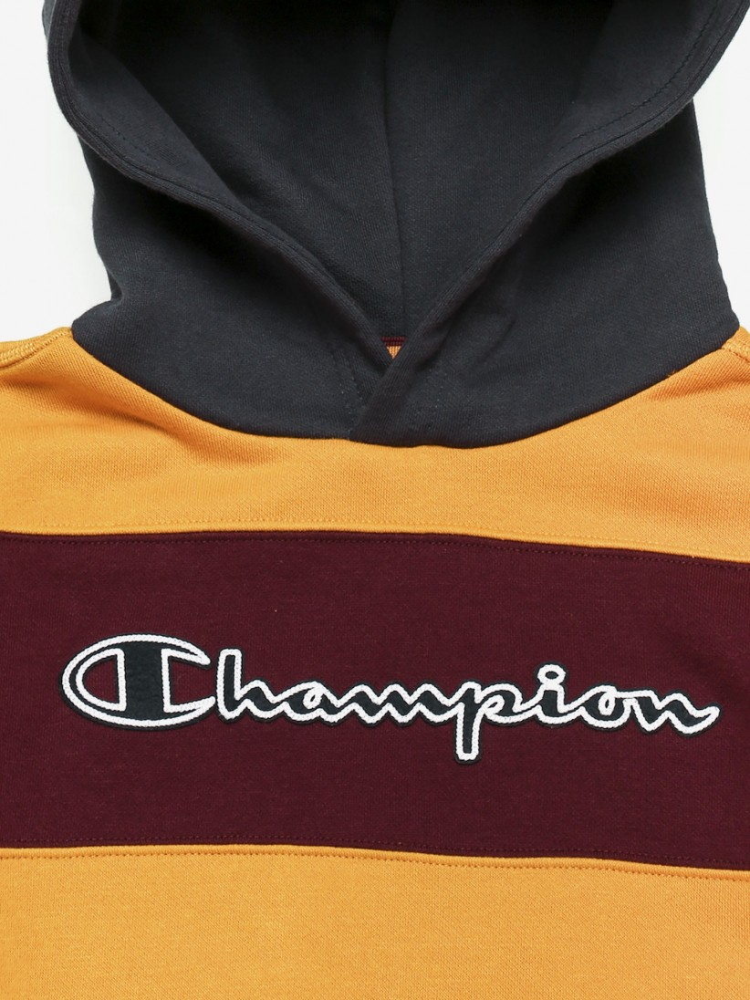 Champion Hooded Stripes Sweater
